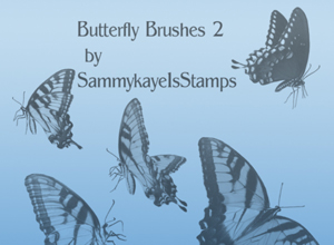 Butterfly Brushes 2