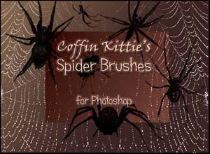 Spider Brushes for Photoshop